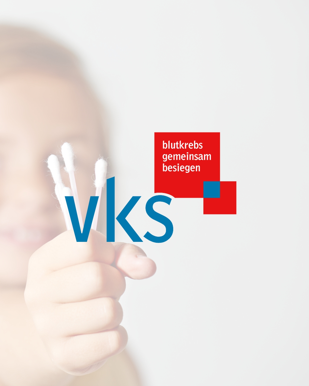 VKS - Website